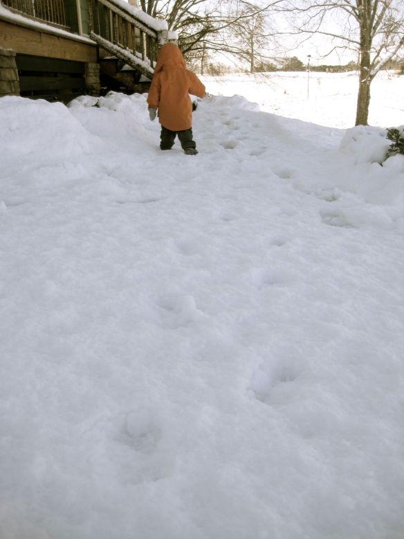 snow7